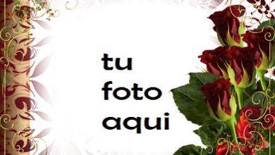 Amor Corazón Rosa Marco Para Foto 390x220 - Amor Corazón Rosa Marco Para Foto