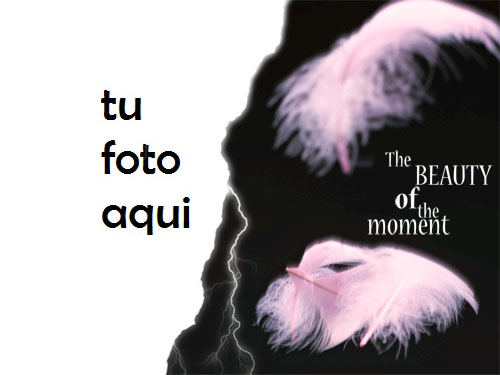 Belleza Del Momento Marco Para Foto - Belleza Del Momento Marco Para Foto
