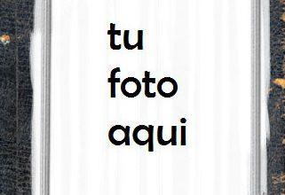 Elegante Y Romantico Marco Para Foto 321x220 - Elegante Y Romantico Marco Para Foto