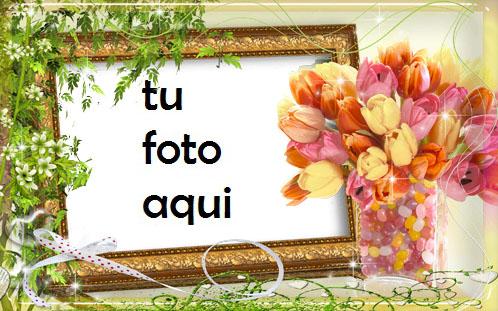 Flores De Tulipán Marco Para Foto - Flores De Tulipán Marco Para Foto