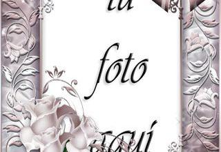 Flores Romanticas Marco Para Foto 320x220 - Flores Romanticas Marco Para Foto