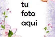 Mensajero De Amor Y Romance. Marco Para Foto 220x150 - Mensajero De Amor Y Romance. Marco Para Foto