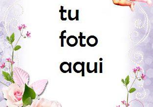 Mensajero De Amor Y Romance. Marco Para Foto 313x220 - Mensajero De Amor Y Romance. Marco Para Foto