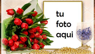 Ramo De Rosas Rojas Marco Para Foto 390x220 - Ramo De Rosas Rojas Marco Para Foto