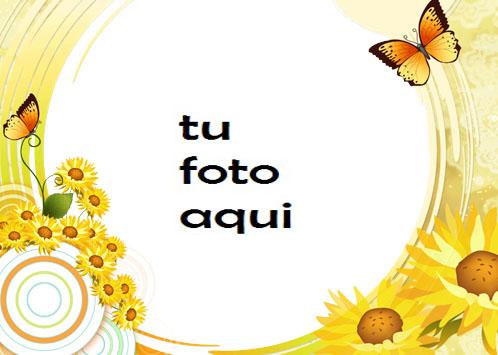 Sol Mariposas Y Amor Marco Para Foto - Sol Mariposas Y Amor Marco Para Foto