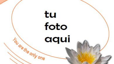 Tú Eres Mi Único Amor Marco Para Foto 390x220 - Tú Eres Mi Único Amor Marco Para Foto