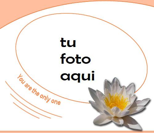 Tú Eres Mi Único Amor Marco Para Foto - Tú Eres Mi Único Amor Marco Para Foto