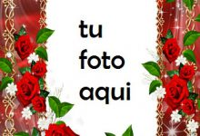 Un Collar De Flores Marco Para Foto 220x150 - Un Collar De Flores Marco Para Foto