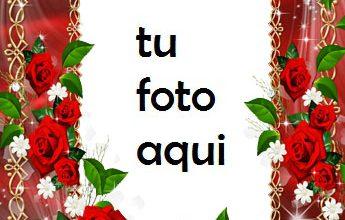 Un Collar De Flores Marco Para Foto 345x220 - Un Collar De Flores Marco Para Foto
