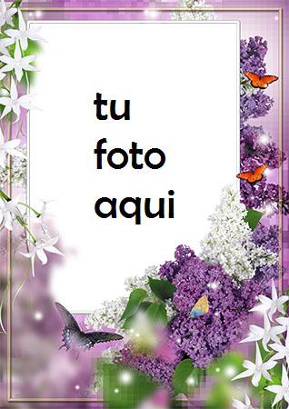 Violeta Y Jazmín Marco Para Foto - Violeta Y Jazmín Marco Para Foto