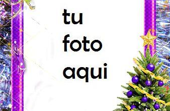 rbol De Año Nuevo Con Decoraciones Violetas Marco Para Foto 338x220 - Árbol De Año Nuevo Con Decoraciones Violetas Marco Para Foto