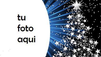 Árbol De Año Nuevo Hecho De Estrellas Marco Para Foto 390x220 - Árbol De Año Nuevo Hecho De Estrellas Marco Para Foto