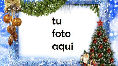 Árbol De Año Nuevo Marco Para Foto 390x220 - Árbol De Año Nuevo Marco Para Foto