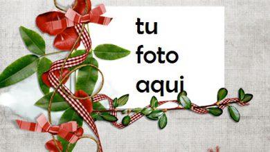 Árbol De Amor Feliz Marco Para Foto 390x220 - Árbol De Amor Feliz Marco Para Foto