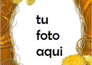 Amor Amarillo Marco Para Foto 313x220 - Amor Amarillo Marco Para Foto