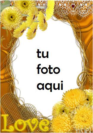 Amor Amarillo Marco Para Foto - Amor Amarillo Marco Para Foto