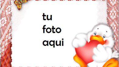 Photo of Amor Patos Con Un Gran Corazón Rojo Marco Para Foto