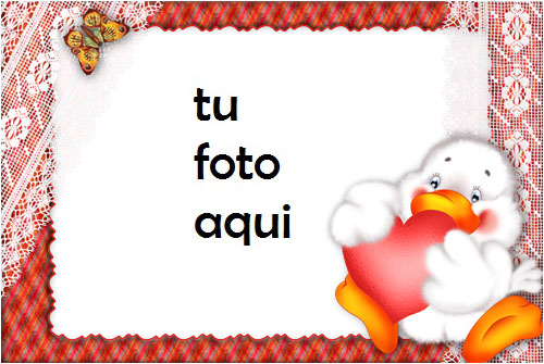 Amor Patos Con Un Gran Corazón Rojo Marco Para Foto - Amor Patos Con Un Gran Corazón Rojo Marco Para Foto
