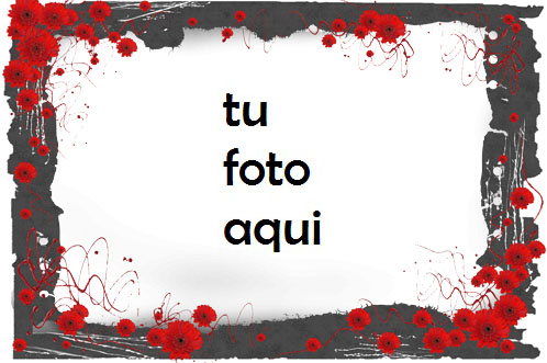Amor rosa Marco Para Foto - Amor rosa Marco Para Foto