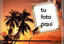 Atardecer En Una Isla Junto Al Mar Marco Para Foto 220x150 - Atardecer En Una Isla Junto Al Mar Marco Para Foto