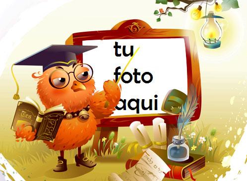 Búho Sabio Marco Para Foto - Búho Sabio Marco Para Foto