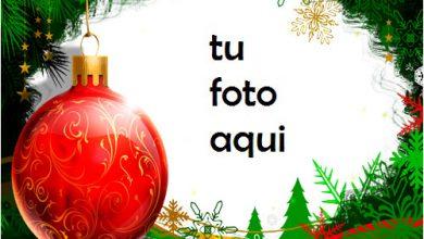Bola Navidad Roja Con Marco Verde Hermoso Año Nuevo Marco Para Foto 390x220 - Bola Navidad Roja Con Marco Verde Hermoso Año Nuevo Marco Para Foto