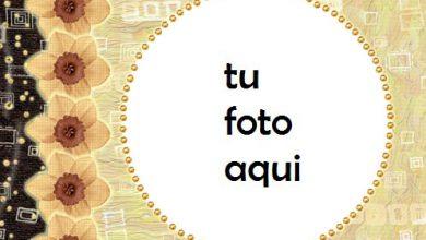 Círculo Amarillo Marco Para Foto 390x220 - Círculo Amarillo Marco Para Foto