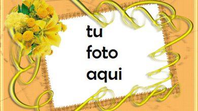 Photo of Color De Verano Marco Para Foto
