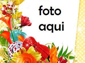 Colores De Primavera Marco Para Foto 298x220 - Colores De Primavera Marco Para Foto
