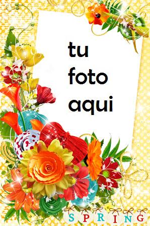 Colores De Primavera Marco Para Foto - Colores De Primavera Marco Para Foto