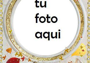 Compromiso Y Matrimonio Marco Para Foto 313x220 - Compromiso Y Matrimonio Marco Para Foto