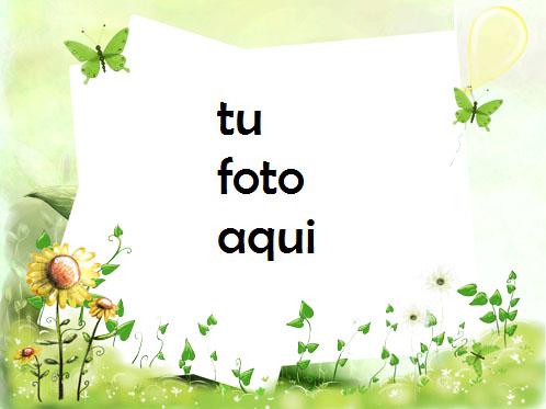 Con Mariposas Verdes Marco Para Foto - Con Mariposas Verdes Marco Para Foto