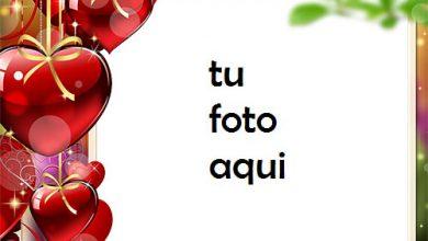 Corazones Colgando De Amor Marco Para Foto 390x220 - Corazones Colgando De Amor Marco Para Foto