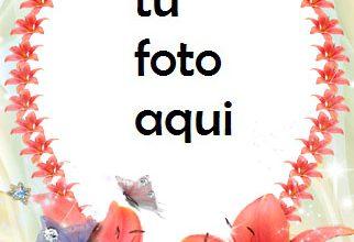 Photo of Corazones Y Flores Para San Valentín Marco Para Foto
