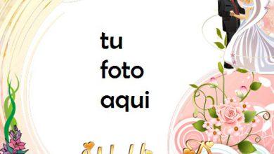 Danza Del Matrimonio Marco Para Foto 390x220 - Danza Del Matrimonio Marco Para Foto