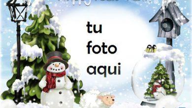 Derivas De Invierno Marco Para Foto 390x220 - Derivas De Invierno Marco Para Foto
