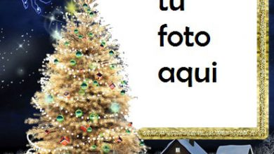 El Árbol De Navidad Más Bello Y Bello Y La Cabeza Del Año. Marco Para Foto 390x220 - El Árbol De Navidad Más Bello Y Bello Y La Cabeza Del Año. Marco Para Foto