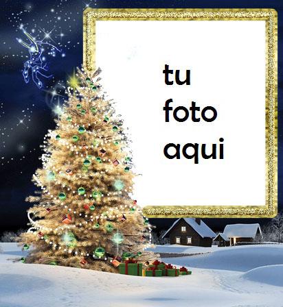 El Árbol De Navidad Más Bello Y Bello Y La Cabeza Del Año. Marco Para Foto - El Árbol De Navidad Más Bello Y Bello Y La Cabeza Del Año. Marco Para Foto
