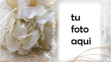 Photo of El Marco De Diamantes Más Hermoso Para El Compromiso Y La Alegría. Marco Para Foto