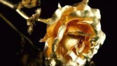 Photo of Escribir En Foto Imagen de flor dorada