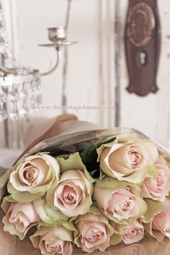 Escribir En Foto Imagen del ramo de rosas blancas más hermoso para el día de San Valentín 1 - Escribir En Foto Imagen del ramo de rosas blancas más hermoso para el día de San Valentín