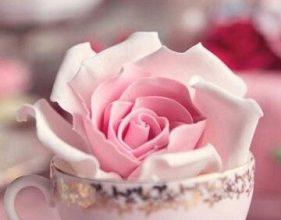 Photo of Escribir En Foto La imagen rosa más hermosa de los amantes.
