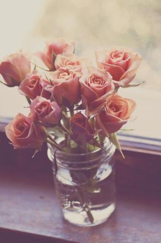 Escribir En Foto Una imagen de un romántico color rosa negro 1 - Escribir En Foto Una imagen de un romántico color rosa negro