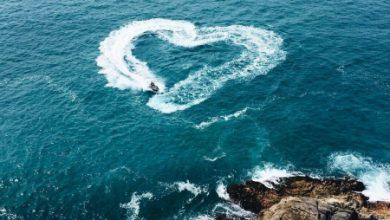 Escribir En Foto corazones de amor para dedicar 390x220 - Escribir En Foto corazones de amor para dedicar