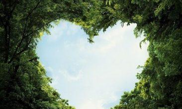 Escribir En Foto corazones kawaii 366x220 - Escribir En Foto corazones kawaii