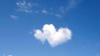 Escribir En Foto corazones lindos 390x220 - Escribir En Foto corazones lindos
