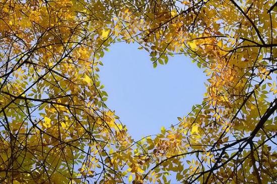 Escribir En Foto corazones pequeños - Escribir En Foto corazones pequeños