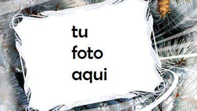 Espíritu De Invierno Marco Para Foto 390x220 - Espíritu De Invierno Marco Para Foto
