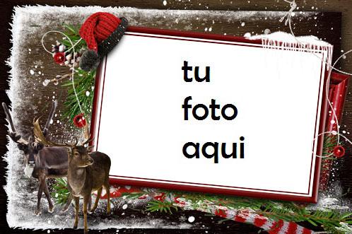 Esperando A Papá Noel En El Frío Bosque De Invierno Marco Para Foto - Esperando A Papá Noel En El Frío Bosque De Invierno Marco Para Foto
