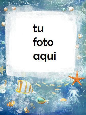 Estrella De Mar Y Pescado De Mar Marco Para Foto - Estrella De Mar Y Pescado De Mar Marco Para Foto